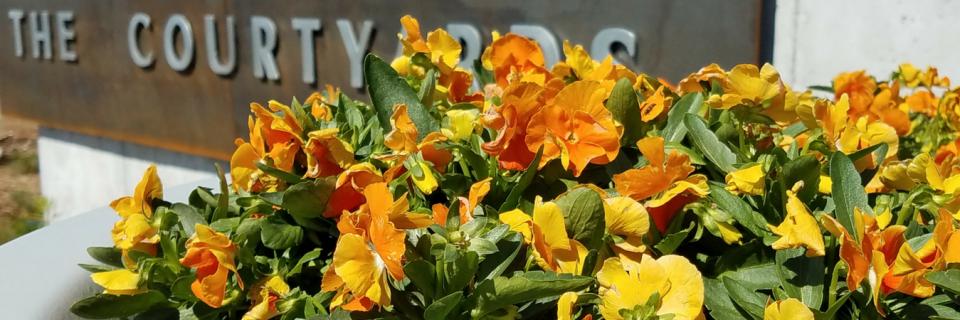 Manhattan, KS Best Commercial Landscape Service  GET A FREE ESTIMATE