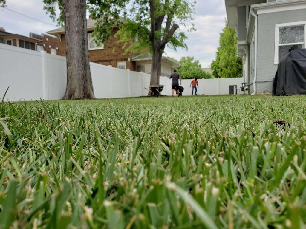 beautiful lawn care manhattan ks